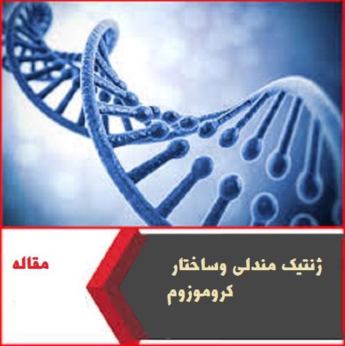 ژنتیک مندلی وساختار کروموزوم - دانلود مقاله