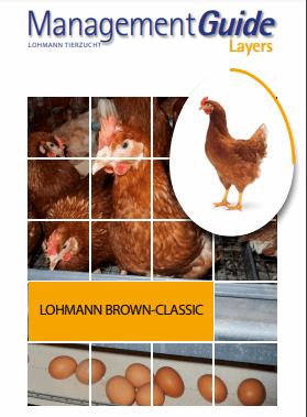 دانلود رایگان فایل مدیریت مرغ قهوه ای لوهمن با فرمت pdf