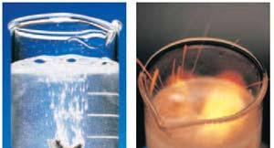 دستور کار استخراج و زیست سنجی جیبرلین و آسیزیک اسید .Bioassey