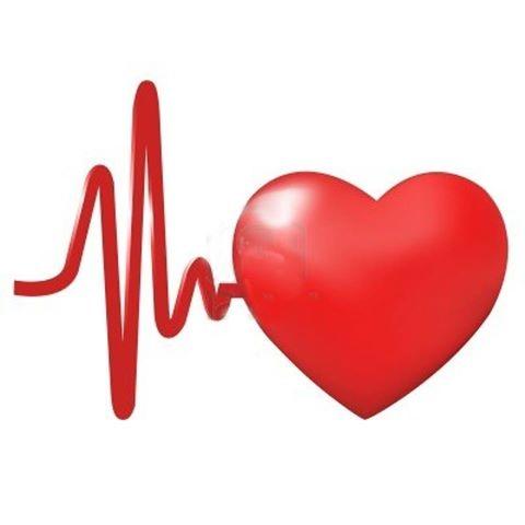 قلب و دستگاه گردش خون (طرح جابربن حیان)