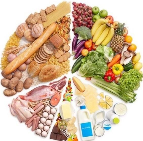 تغذیه ورزشی_درجه2