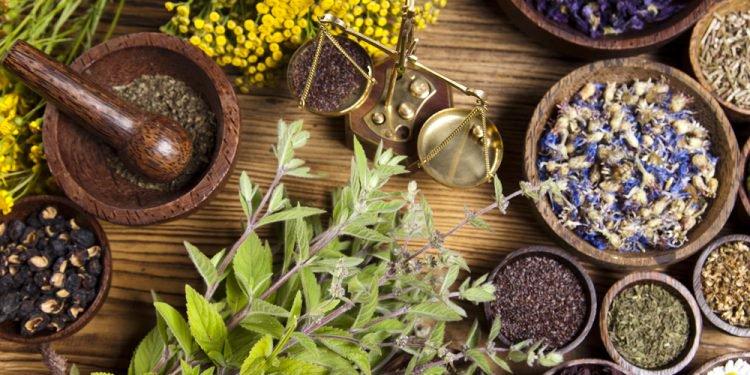 بسته ی کامل طب سنتی و طب اسلامی + هدیه