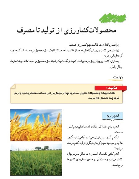امتحان درس 6 مطالعات اجتماعی ششم (محصولات کشاورزی از تولید تا مصرف)