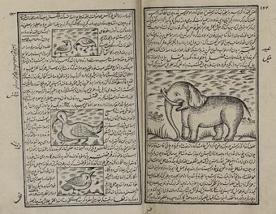 خواص الحیوان - نسخه دانشگاه مک گیل