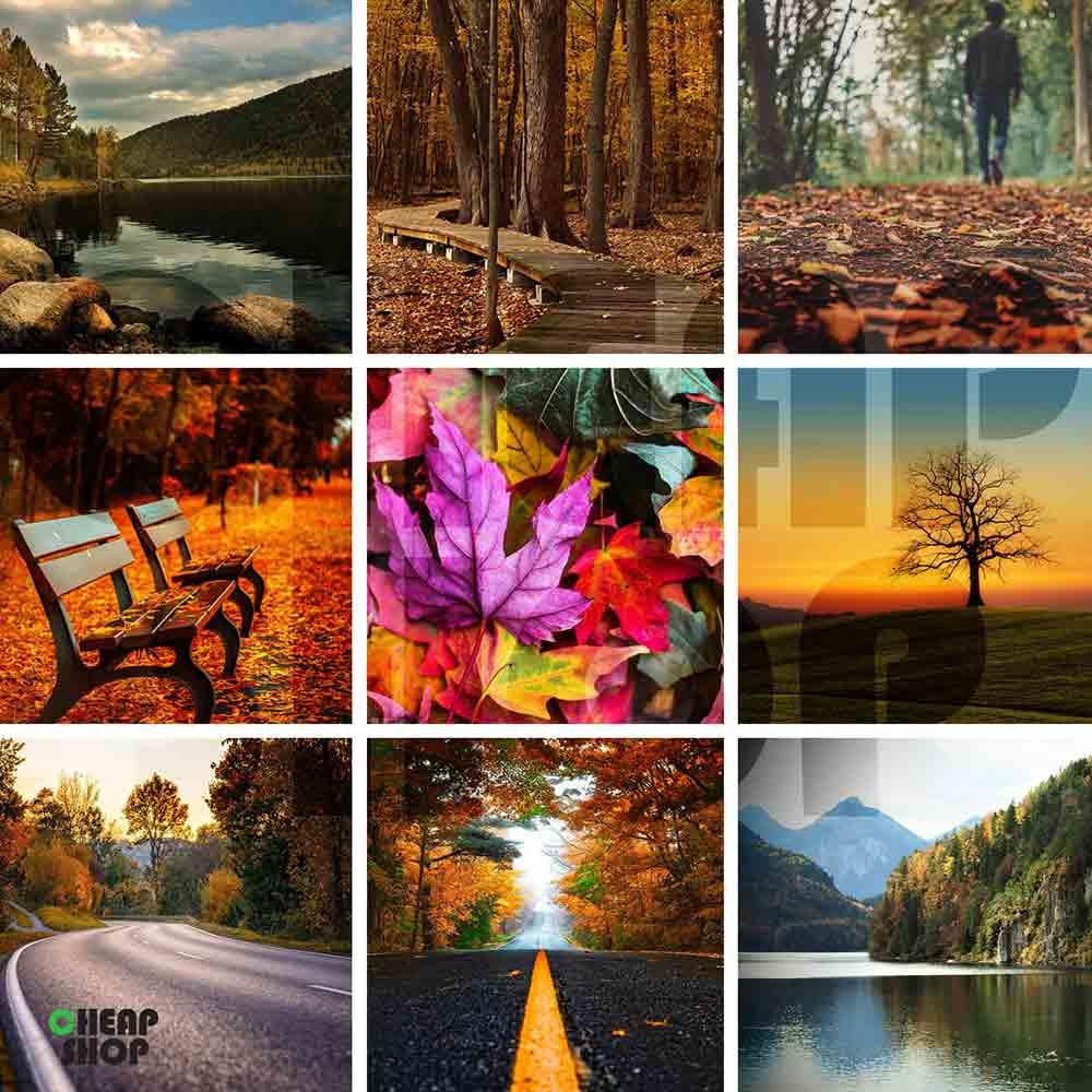 مجموعه  ی جدید، فوق العاده متنوع و جذاب تصاویر مناظر پاییز