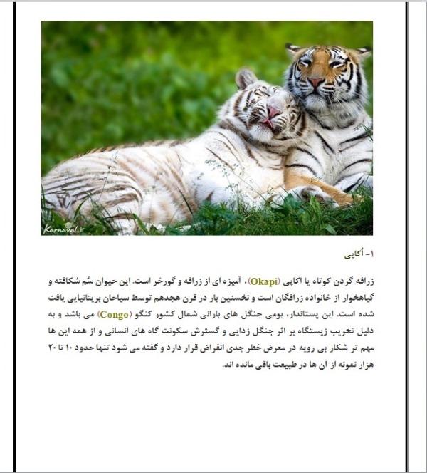 حیوانات  در خطر انقراض
