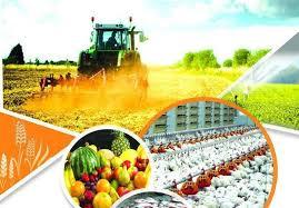 پکیج تحقیقاتی کشاورزی و دام پروری