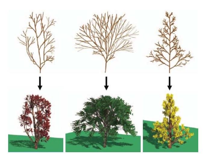مدل سازی کامپیوتری گیاهان و درختان