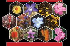 تنوع و تکامل گیاهان