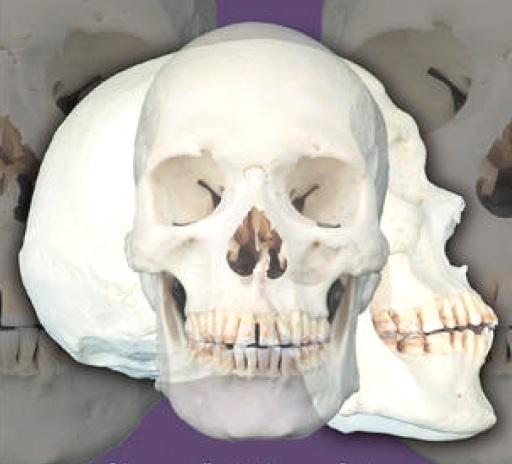 اطلس رنگی بافت شناسی، آناتومی و فیزیولوژی انسان