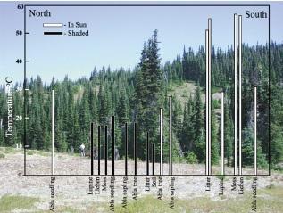کتاب تغییرات ساختاری و عملکردی درختان در رابطه با عمرشان