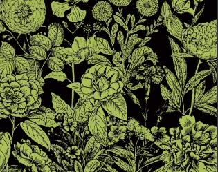 راهنمای مشاهده و بررسی گیاهان