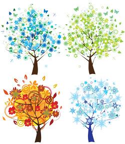 درخت چهار فصل 6