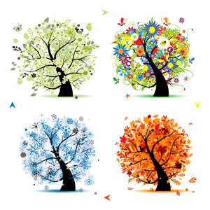 درخت در چهارفصل 8