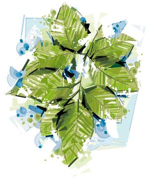 لایه باز وکتور برگ و گیاه