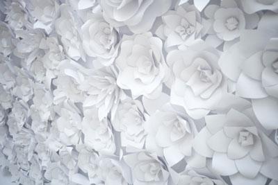 عکس گلهای سفید کاغذی