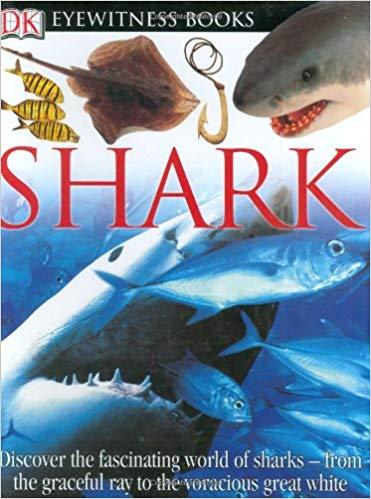خرید کتاب Shark DK Eyewitness Books