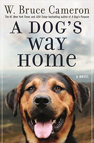خرید کتاب A Dogs Way Home