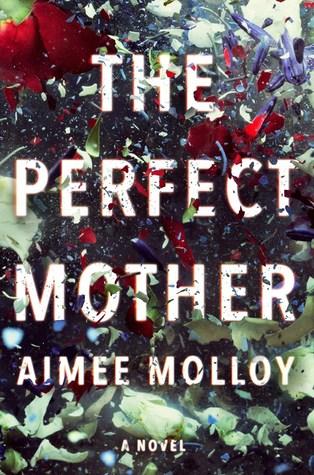 خرید رمان The Perfect Mother