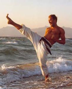 فرهنگ لغات و اصطلاحات کاراته
