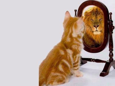 زندگی رویایی با قدرت اعتمات به نفس