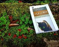 دانلود رایگان کتاب کافکا در کرانه