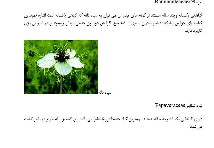 استاندارد آموزشی مهارت کشت گیاهان دارویی