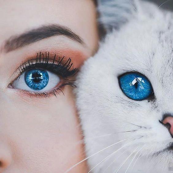 سابلیمینال تغییر رنگ چشم آبی جذاب