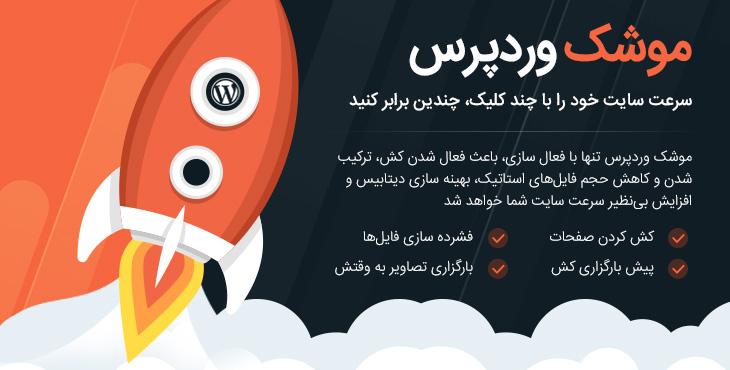 افزونه وردپرس راکت – WP Rocket فارسی