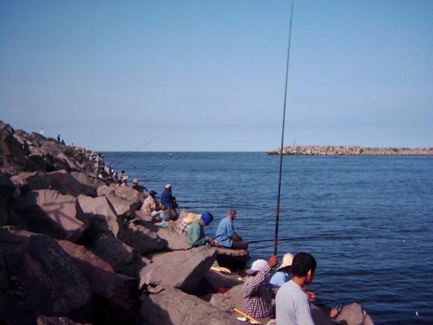 دانلود کاملترین تحقیق موج شکن های انزلی