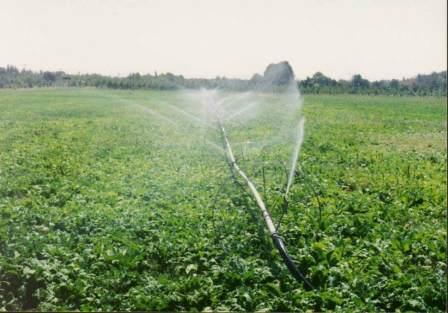 پاورپوینت آبیاری بارانی