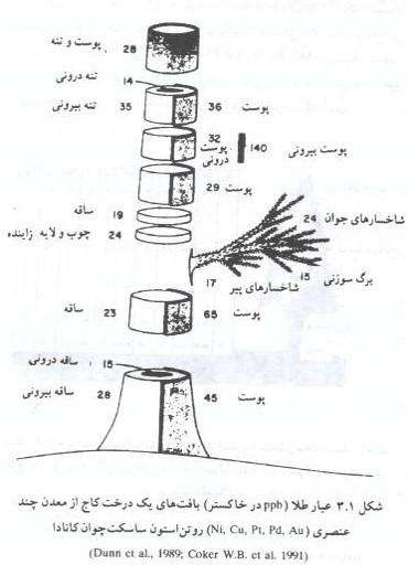 روشهای بیوژئوشیمیایی و ژئوبوتانی در اکتشافات ژئوشیمیایی