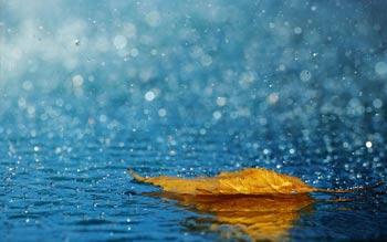 باران اسیدی و اثرات مخرب آن