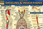 دانلود کتاب مرجع آناتومی بدن انسان