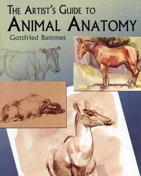 کتاب آموزش نقاشی آناتومی حیوانات The Artist's Guide to Animal Anatomy