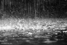 تعیین مدل ریاضی برآورد ذخیره آب در خاک و دبی خروجی در اثر بارش باران با استفاده از روش توده سازی