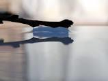 بررسی آزمایشگاهی شکل گیری پروفیل های سطح آب در روش جدید آبگیری از رودخانه از طریق آبگیر کفی با محیط متخلخل