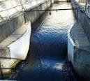 بررسی آزمایشگاهی اثر عدد فرود بر آبشستگی در آبشکن سرسپری جاذب مستغرق