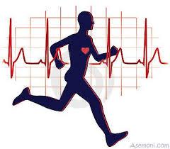 مقاله بیماری نارسایی قلبی و رابطه آن با ورزش