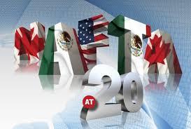 دانلود تحقیق بررسی سازمان های بین المللی نفتا NAFTA