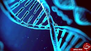تحقیق درباره ژن درماني