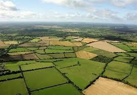 تحقیق درباره ضایعات و پسماندهای محصولات کشاورزی