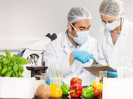 تحقیق درباره فرایند انجماد مواد غذایی