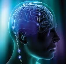تحقیق درباره مهندسی معکوس مغز