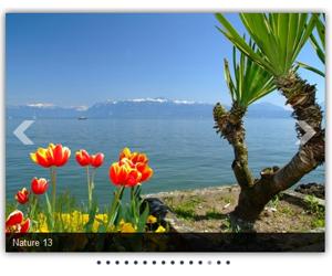 ماژول جوملا اسلایدشو تصاویر Ari فارسی