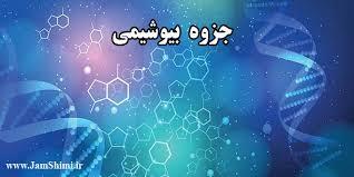 دانلود جزوه بیوشیمی عمومی رشته زیست شناسی 1411165