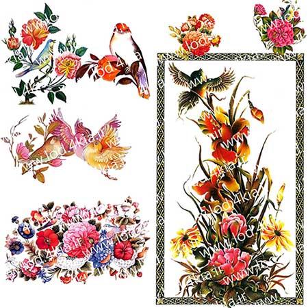 تصاویر گل و پرنده مینیاتوری