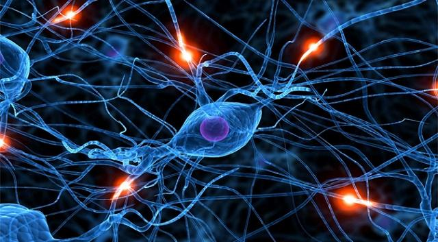 آموزش شبکه عصبی مصنوعی به همراه تشریح کامل مسائل