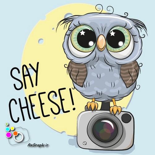 وکتور کارتونی جغد و دوربین عکاسی -کد 450