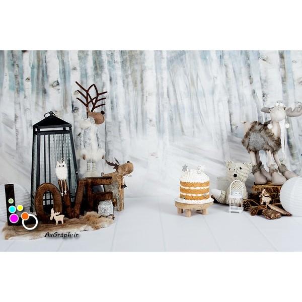 بک دراپ تولد تم زمستان-کد 577